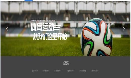 重庆魏仕体育发展有限公司
